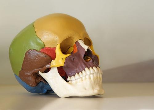Cranio Sacrale Körperarbeit